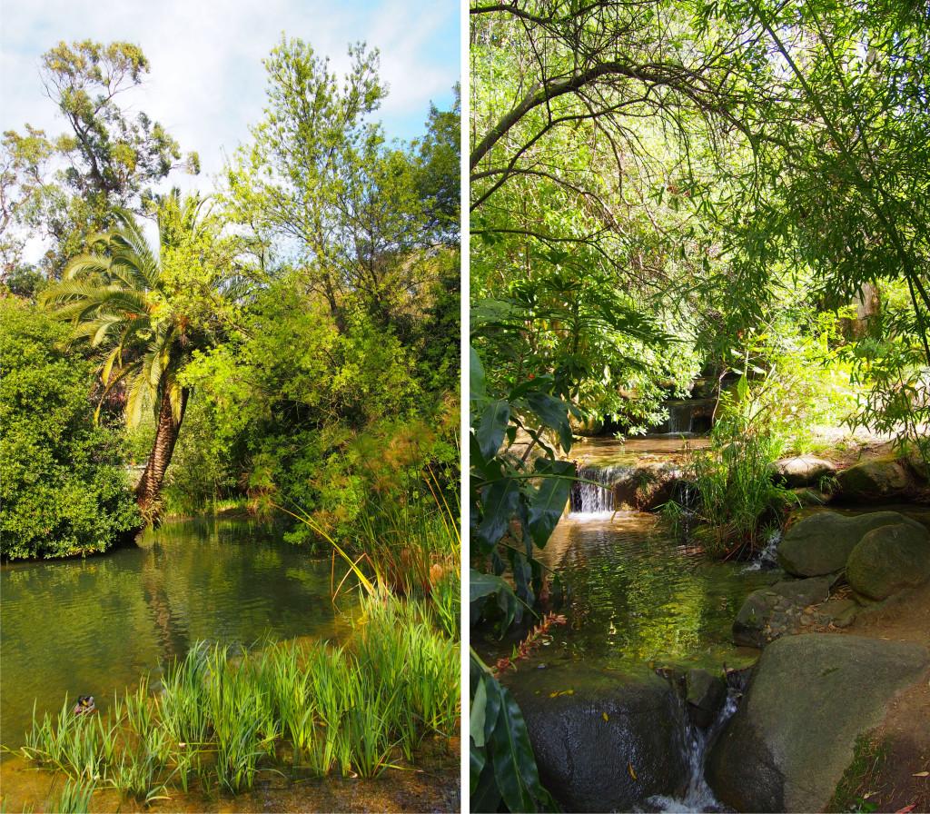 Jardim-Gulbenkian_3