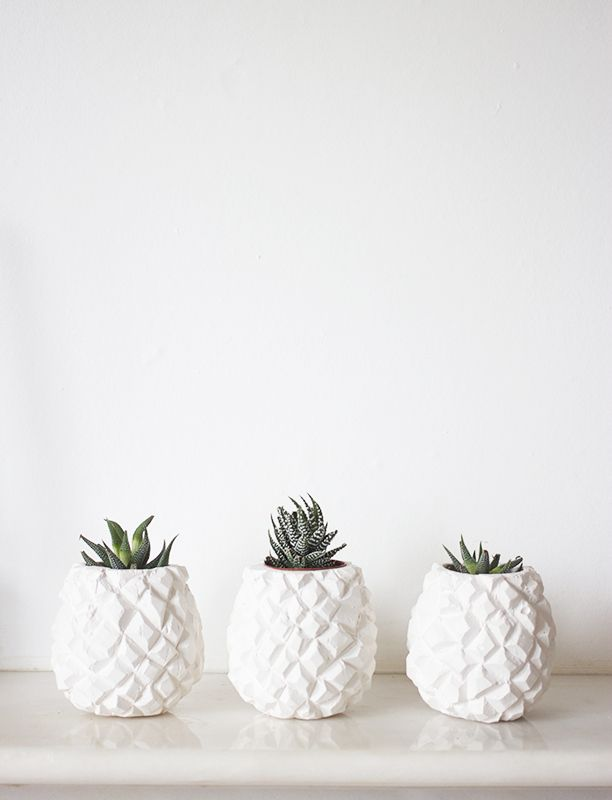 ananas 05