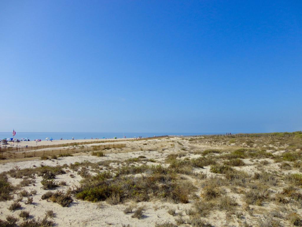 08 Praia Manta Rota