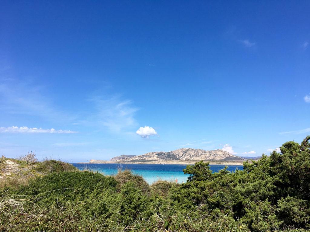 spiaggia-la-pelosa-002