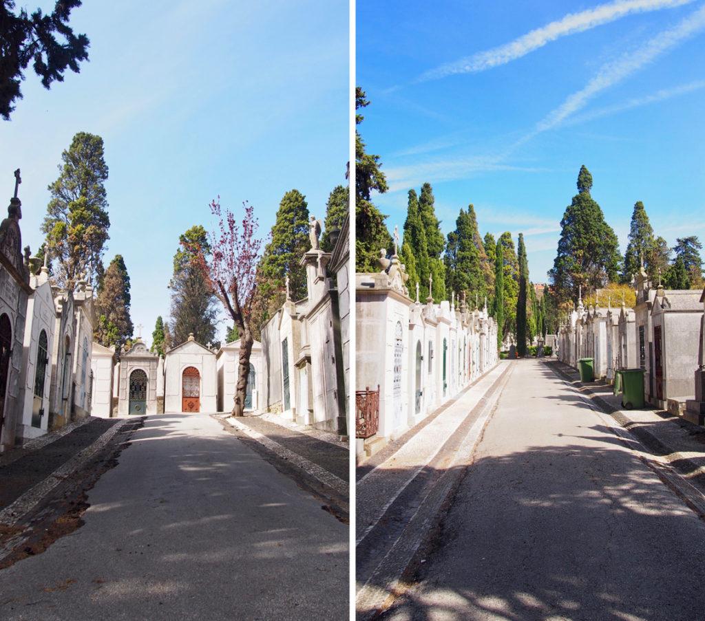 cemitério prazeres 12