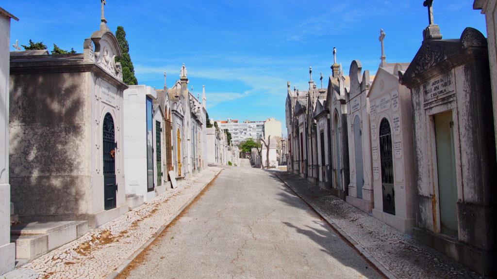 cemitério prazeres 13